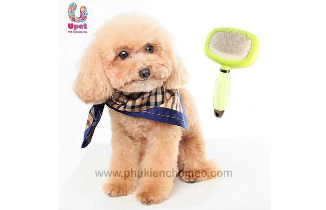 UPET là Top 10 Shop bán phụ kiện cho thú cưng uy tín ở TPHCM